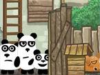 3-pandas-in-brazil