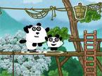 3-pandas-in-japan