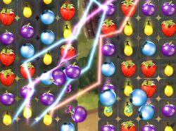 Berry Match