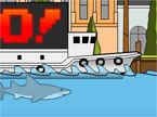 sydney-shark