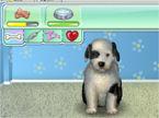 Virtual Puppy